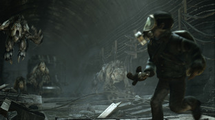 Images Metro : Last Light PC - 12