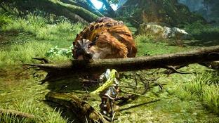 Images de Monster Hunter Online