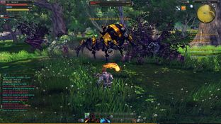 Test RaiderZ PC - Screenshot 57