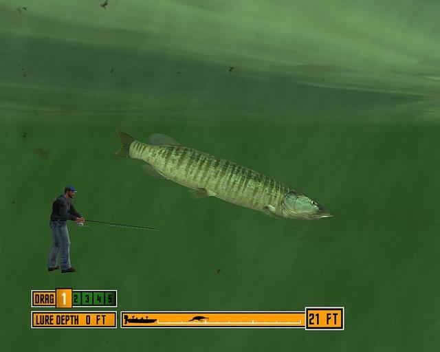 La pêche dhiver sur la perche sur motylya vidéo