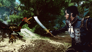 Risen 2 : Dark Waters [PC] [DF] [TB]