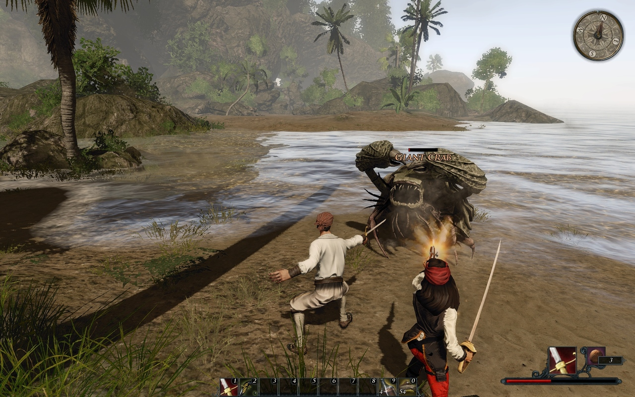 Risen 2 Dark Water Multi4 - VOSTFR - [PC] [MULTI]