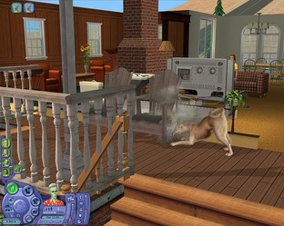 Test Les Sims 2 : Animaux & Cie PC - Screenshot 27