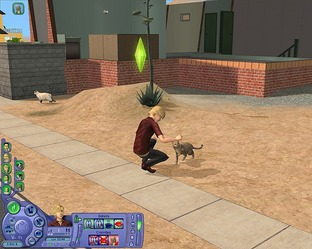 Test Les Sims 2 : Animaux & Cie PC - Screenshot 34