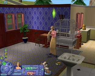 Test Les Sims 2 : Animaux & Cie PC - Screenshot 36