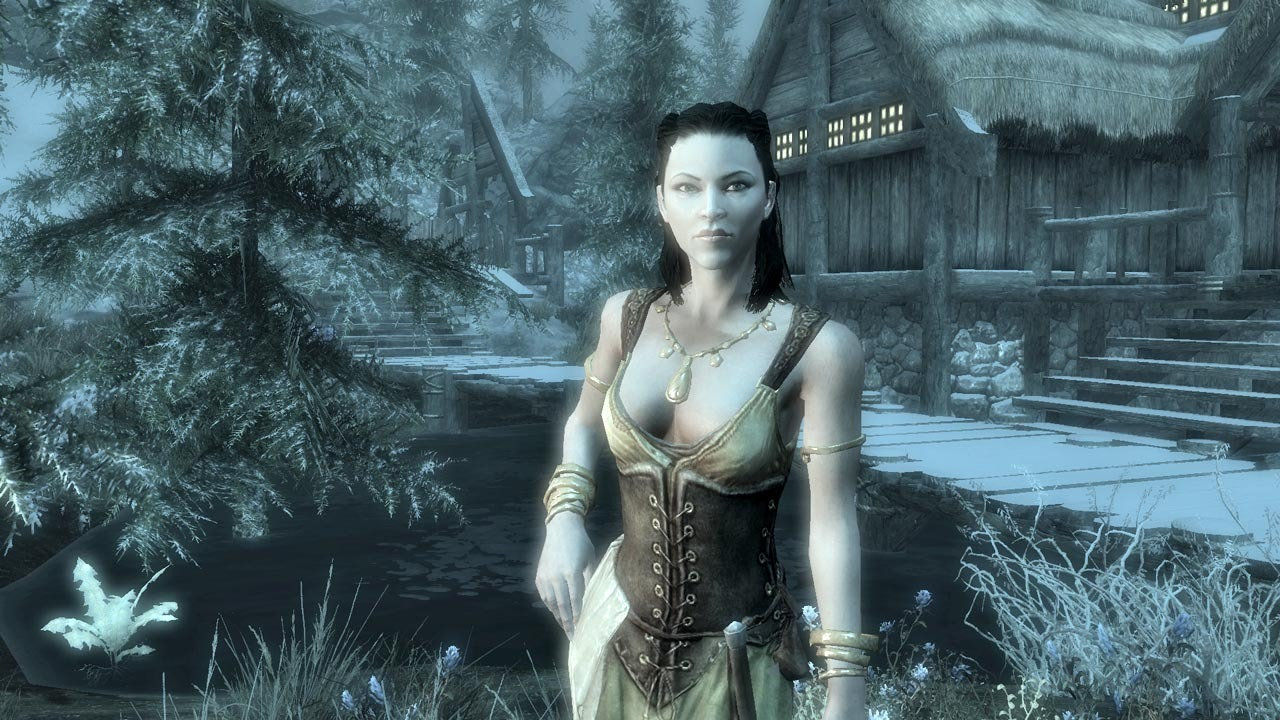 The Elder Scrolls V Skyrim Update 13 RELOADED