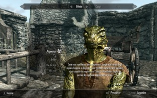 Test The Elder Scrolls V : Skyrim PC - Screenshot 146
