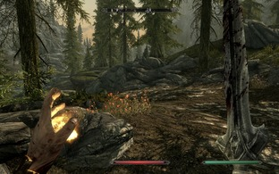 Test The Elder Scrolls V : Skyrim PC - Screenshot 153