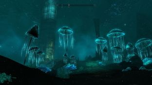 The Elder Scrolls V : Skyrim PC - Screenshot 490