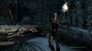 The Elder Scrolls V : Skyrim PC - Screenshot 530