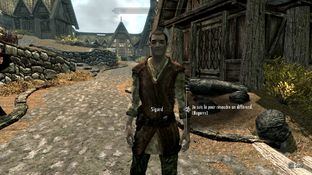 The Elder Scrolls V : Skyrim PC - Screenshot 549