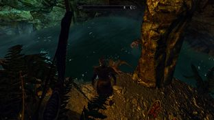 The Elder Scrolls V : Skyrim PC - Screenshot 645