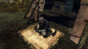 The Elder Scrolls V : Skyrim PC - Screenshot 686