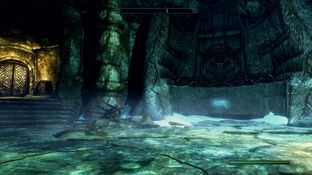 The Elder Scrolls V : Skyrim PC - Screenshot 772