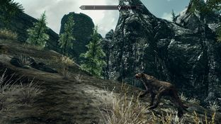 The Elder Scrolls V : Skyrim PC - Screenshot 834