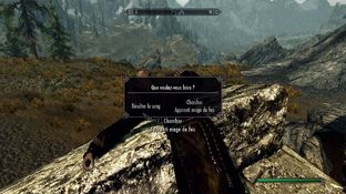 The Elder Scrolls V : Skyrim PC - Screenshot 856