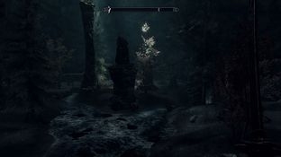 The Elder Scrolls V : Skyrim PC - Screenshot 863