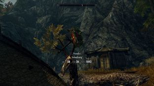 The Elder Scrolls V : Skyrim PC - Screenshot 865