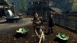 The Elder Scrolls V : Skyrim PC - Screenshot 938