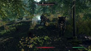 The Elder Scrolls V : Skyrim PC - Screenshot 986