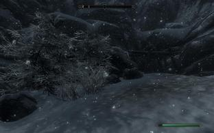 The Elder Scrolls V : Skyrim PC - Screenshot 1021