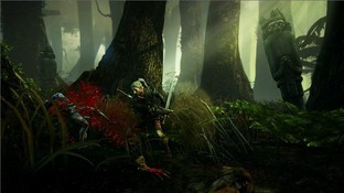 [MULTI] [PC]  The Witcher 2 : Assassins of Kings  + crack  (Exclue)