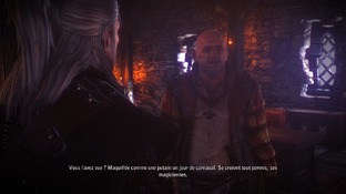 The Witcher 2 : Assassins o