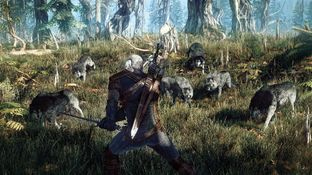 The Witcher 3 : Wild Hunt PC