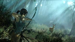 Les configurations de Tomb Raider sur PC