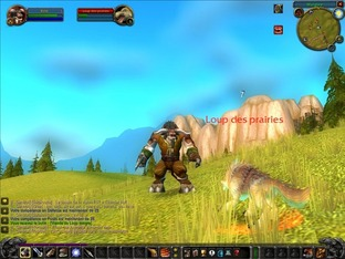 Aperçu World Of Warcraft PC - Screenshot 348