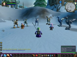 Test World of Warcraft PC - Screenshot 364