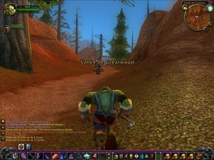 Test World of Warcraft PC - Screenshot 366
