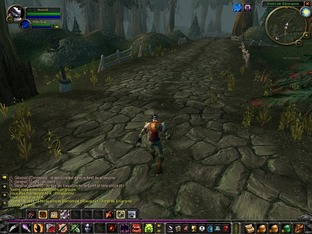 Test World of Warcraft PC - Screenshot 371