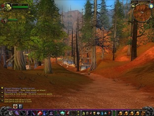 Test World of Warcraft PC - Screenshot 372
