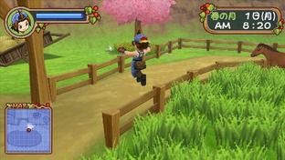 Harvest Moon : Hero of Leaf Valley PlayStation Portable