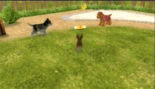 Petz : Ma Famille Chiots PlayStation Portable