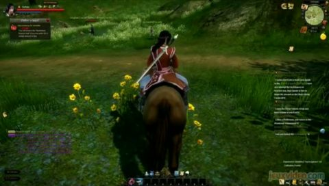 Age of Wulin : Legend of the Nine Scrolls : Shaolin style