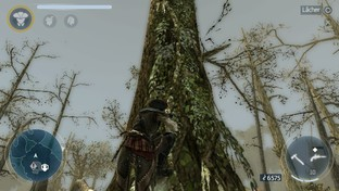 Assassin's Creed III : Liberation Vita - Screenshot 228