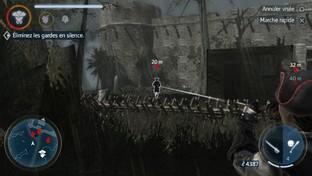 Assassin's C
