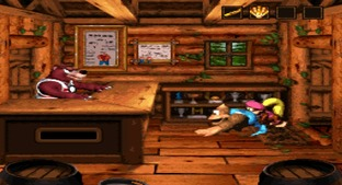 Donkey Kong Country 3 : Dixie Kong's Double Trouble Wii