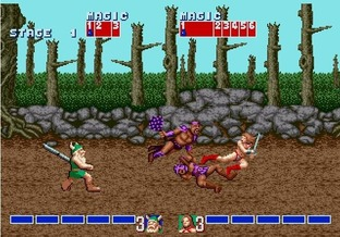 Test Golden Axe Wii - Screenshot 17