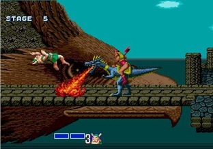 Test Golden Axe Wii - Screenshot 20