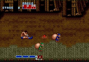 Test Golden Axe Wii - Screenshot 21