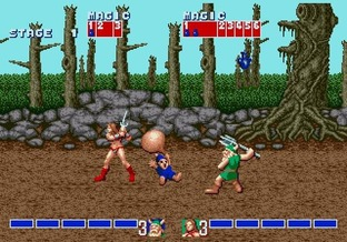 Test Golden Axe Wii - Screenshot 27