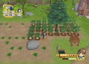 Harvest Moon : L'Arbre de la Sérénité Wii