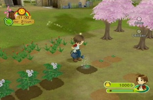 Harvest Moon : Parade des Animaux Wii