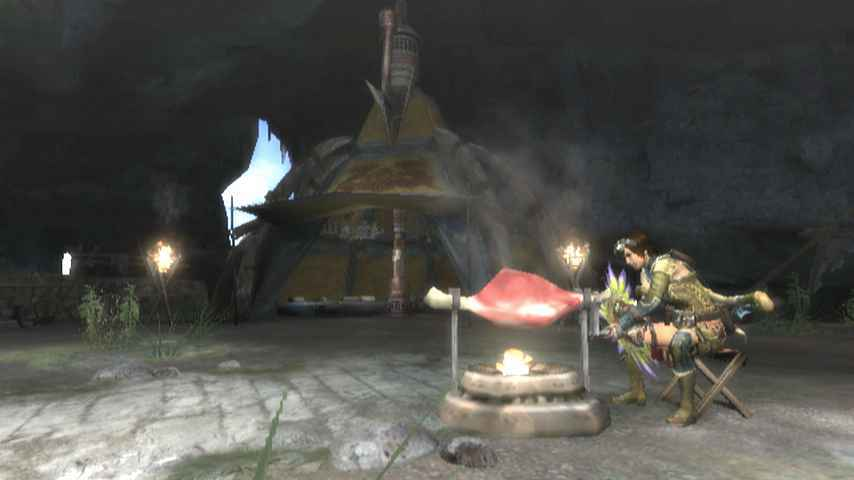 Images Monster Hunter 3 Wii - 10