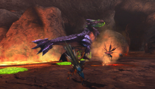 Images de Monster Hunter
