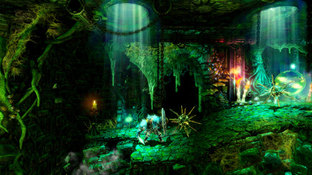 Images Trine 2 : Director's Cut Wii U - 12