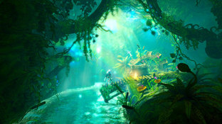 Images Trine 2 : Director's Cut Wii U - 13